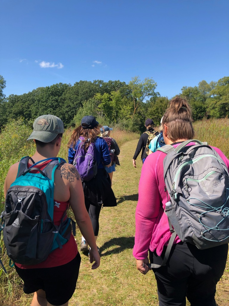 Photo of a group of hikers on a sunny day in a field heading towards a wooded area. The photographer has taken the photo from behind the group.