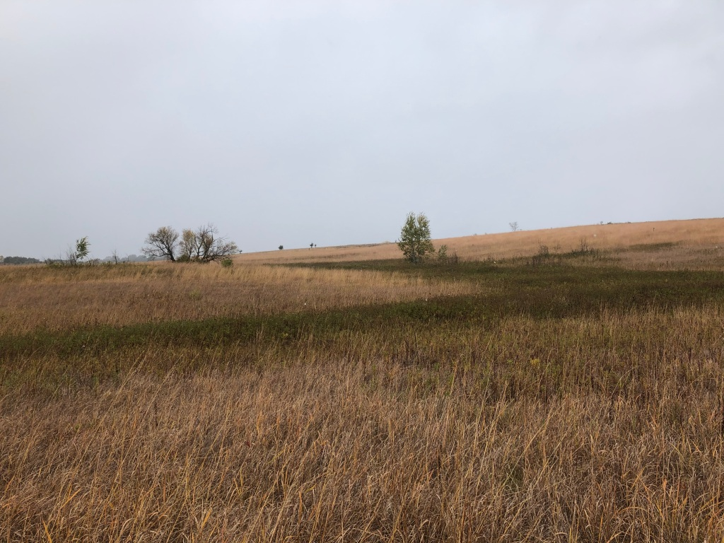 Landscape photo of Afton State Park's Prairie Loop trail.