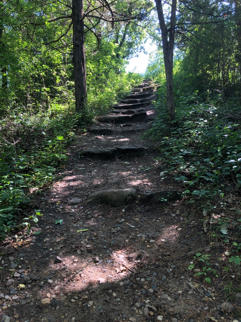 A dirt and rock trail heads upward from the bottom of the picture with stone steps heading off into the distance. The trail is bordered by lush green vegetation and trees.