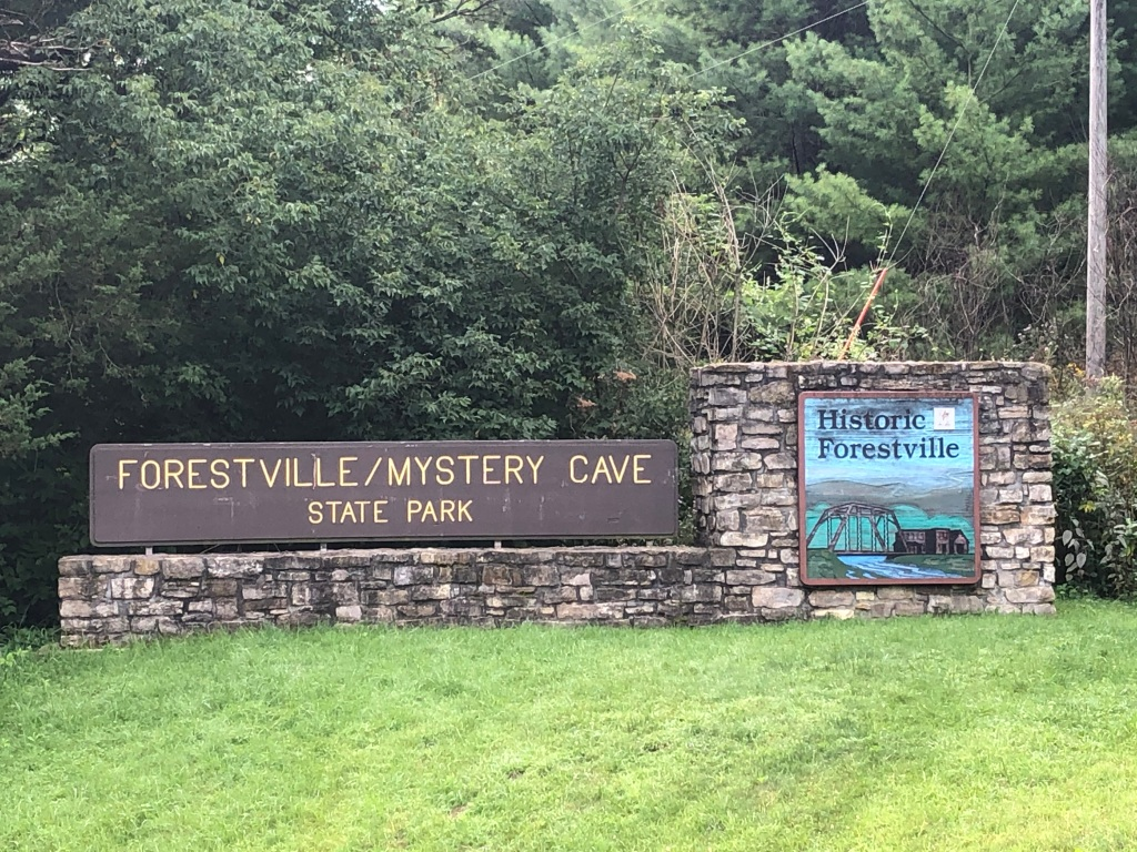 The image is of the Forestville Mystery Cave State Park sign. To the left is the park name in yellow block letters on a brown wooded background, on the right a smaller square sign for the Historic Forestville that has an image of the steel bridge and buildings which is carved in wood and painted. Both wooden signs are placed on a stone supporting structure. The foreground of the image is green grass, the background a variety of trees.