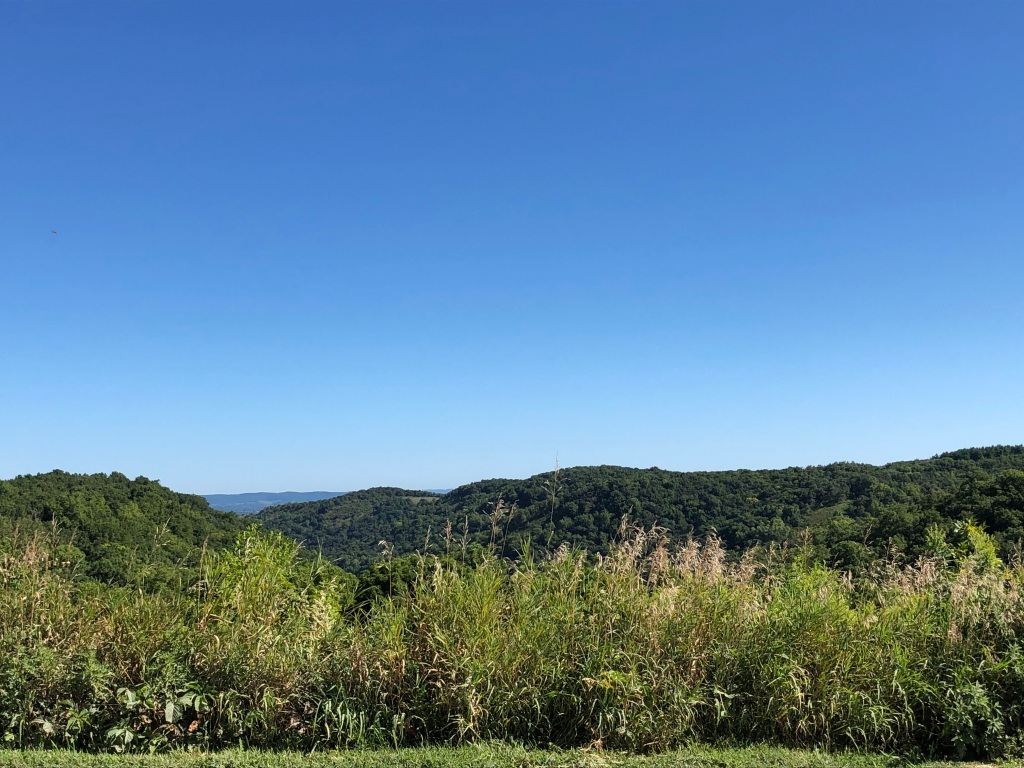 The image shows a landscape of grasses in the foreground, verdant rolling hills  and a deep blue sky with no clouds.