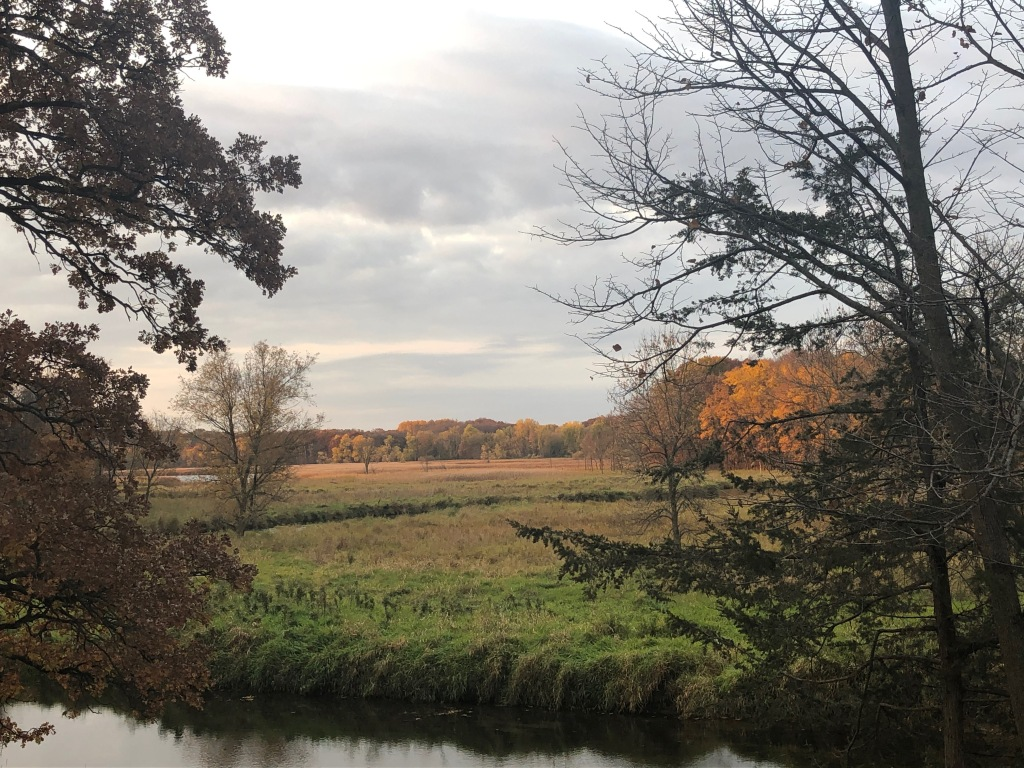 The image is a late afternoon in a landscape with fall colors of green, orange and yellows. There are trees framing the image with a small river in the foreground.
