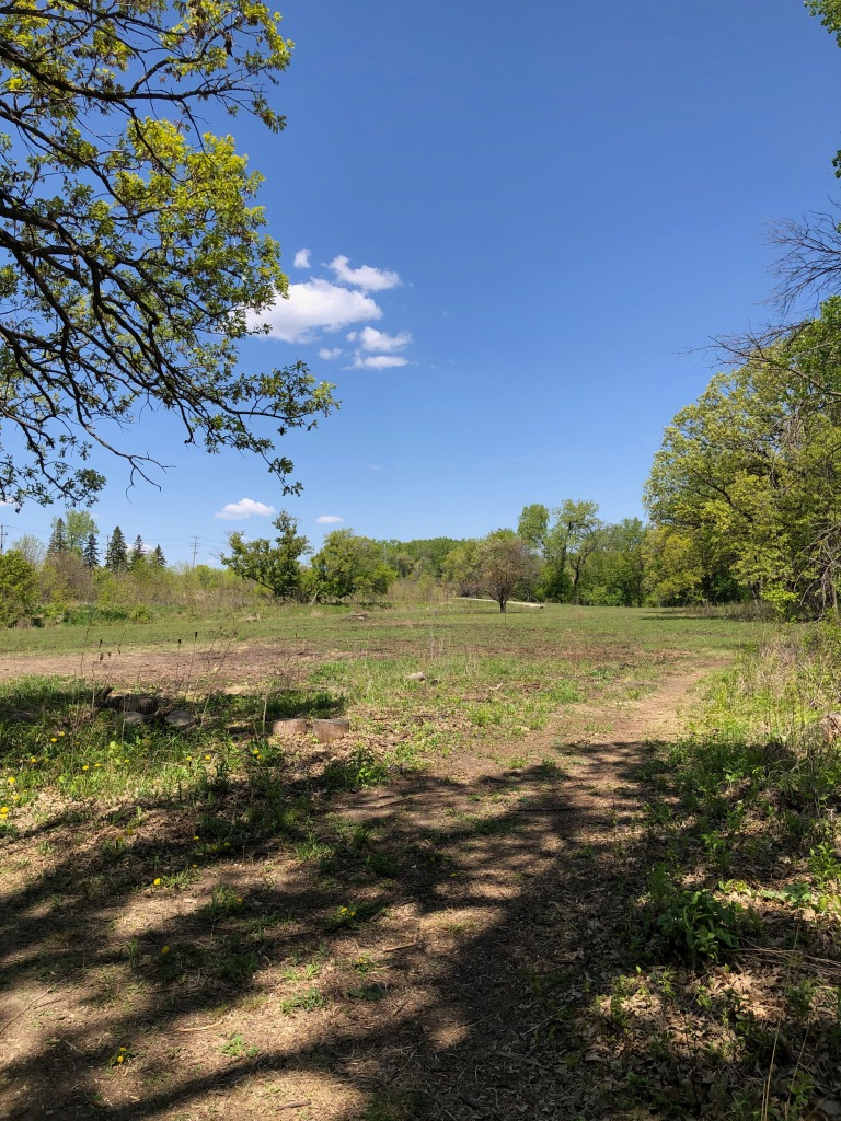 Photo is taken from the shade of a tree overlooking a flat dirt trail which heads off to the right. The trail is surrounded by low vegetation and trees in the distance. The sky is blue with just a few clouds.