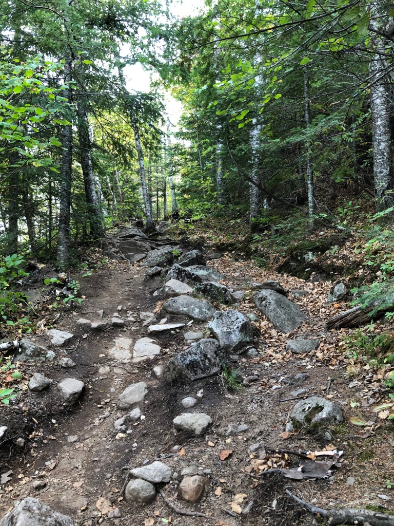 The photo is of the rocky Superior Hiking Trail heading into the distance among pine and aspen trees. The rocks make up part of the footing for the trail, in many places acting as natural staircases.
