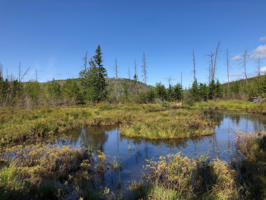 Image is of a small lake surrounded by a low vegetation. The lake is reflecting the blue sky which has few clouds.